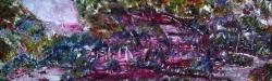 amazzonia 120x40  2012